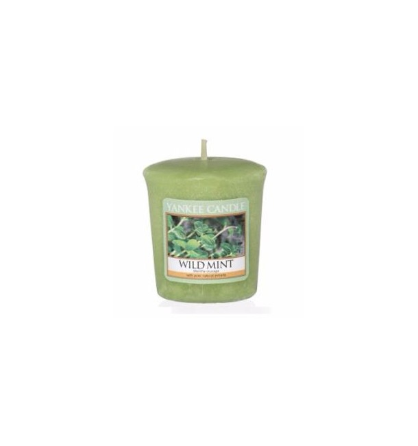 Votive Menthe Sauvage - Yankee Candle
