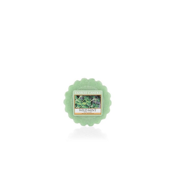 Tartelette Menthe Sauvage - Yankee Candle