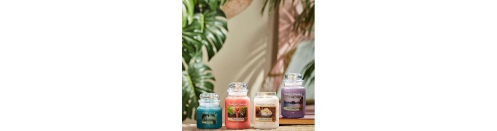 Soldes Yankee Candle -50%